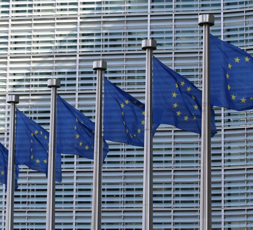 Синя карта на ЕС
